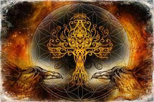 Schamanismus Fortgeschrittenenseminare