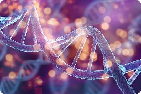 Krankheiten und Genetik